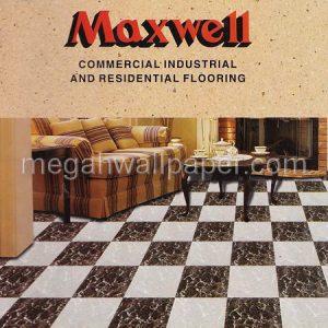 VINYL maxwell
