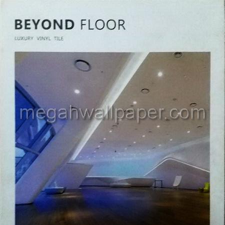 vinyl beyond