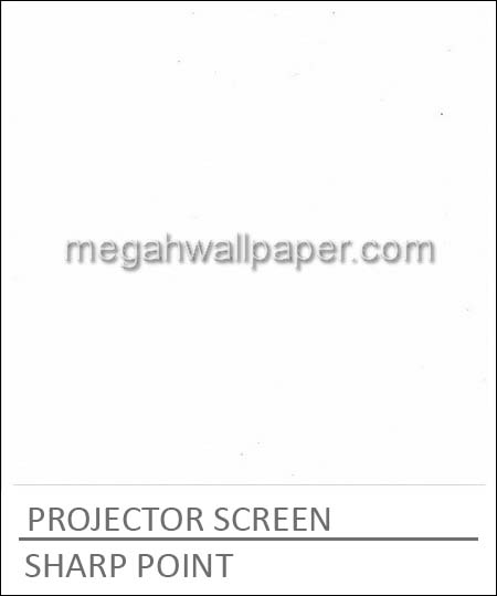 SHARP POINT PROJECTOR SCREEN