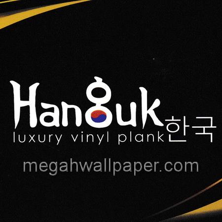 Hanguk vinyl sticker